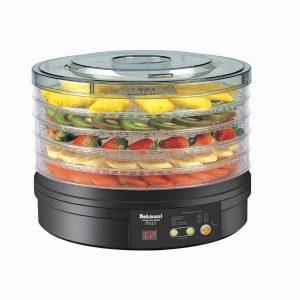 میوه خشک کن دلمونتی مدل Digital fruit dryer DL 190