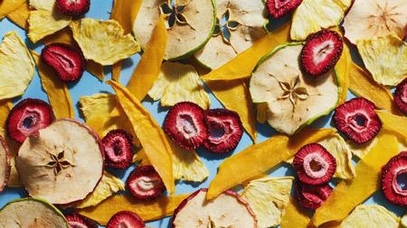 میوه خشک کن دلمونتی